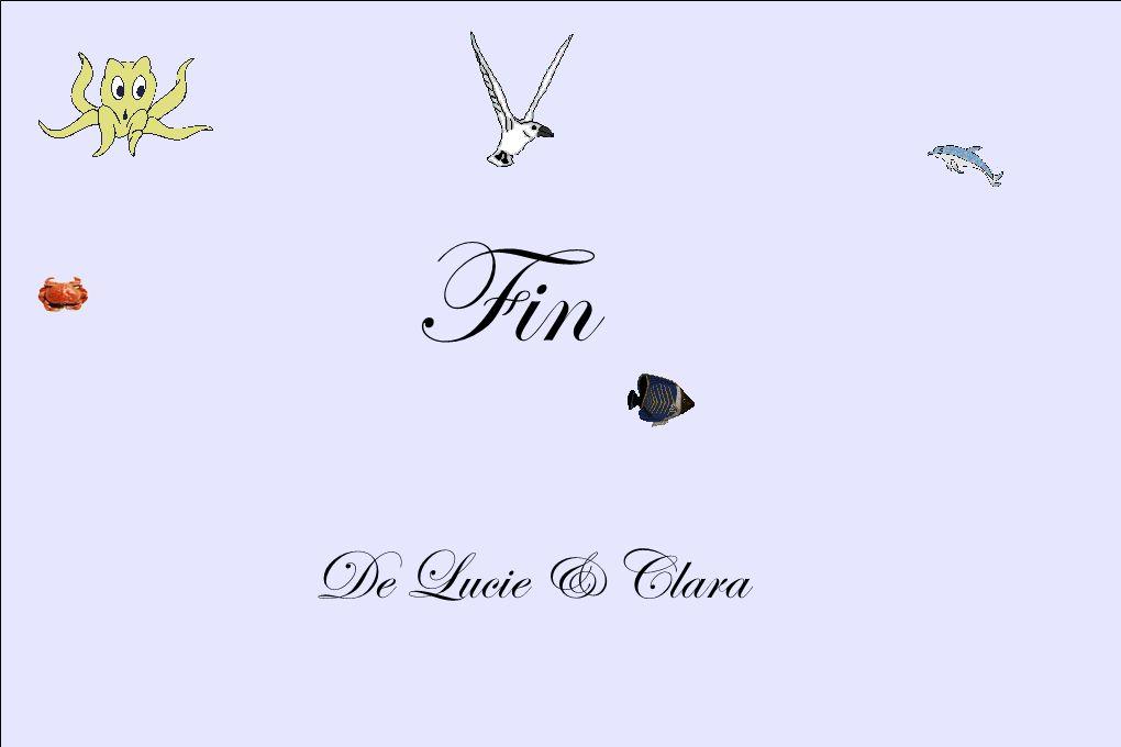 Fin De Lucie & Clara 8
