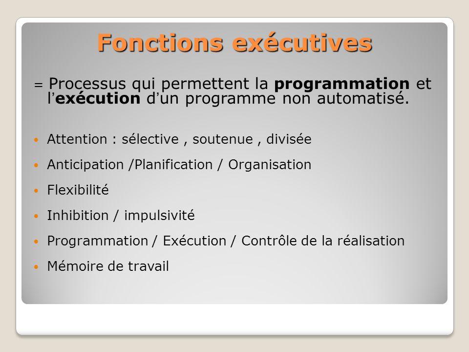 Fonctions exécutives = Processus qui permettent la programmation et l'exécution d'un programme non automatisé.