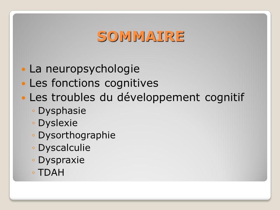 SOMMAIRE La neuropsychologie Les fonctions cognitives