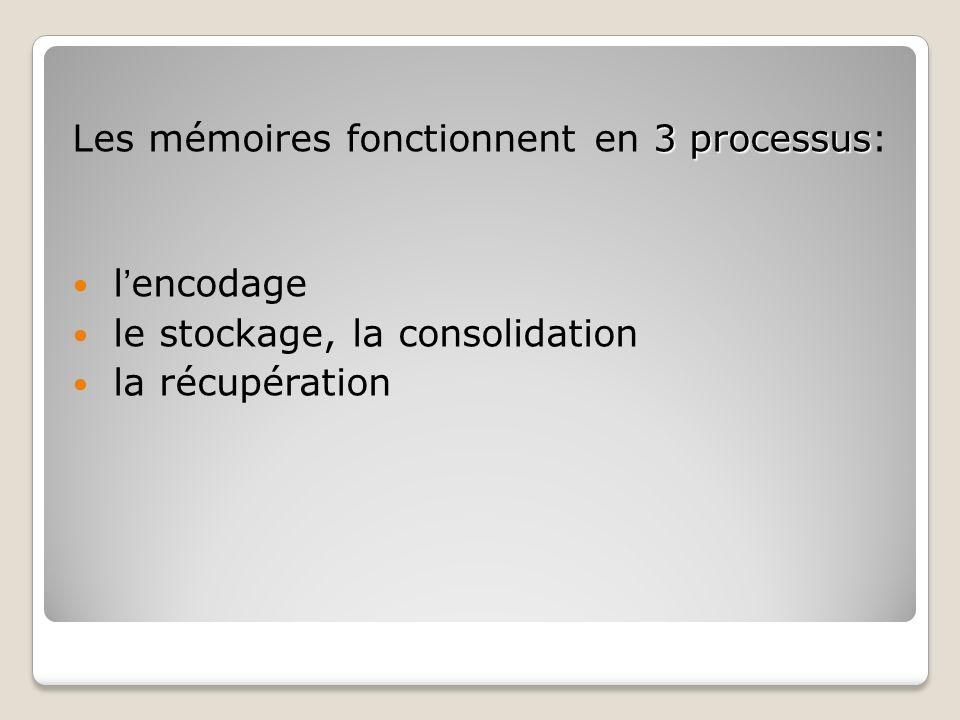 Les mémoires fonctionnent en 3 processus: