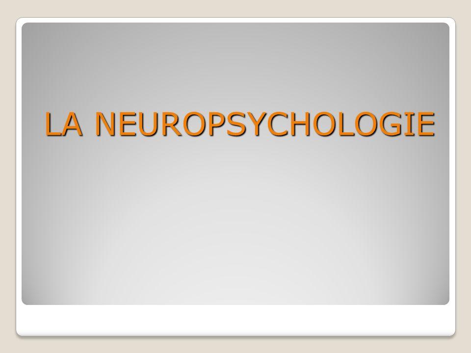 LA NEUROPSYCHOLOGIE