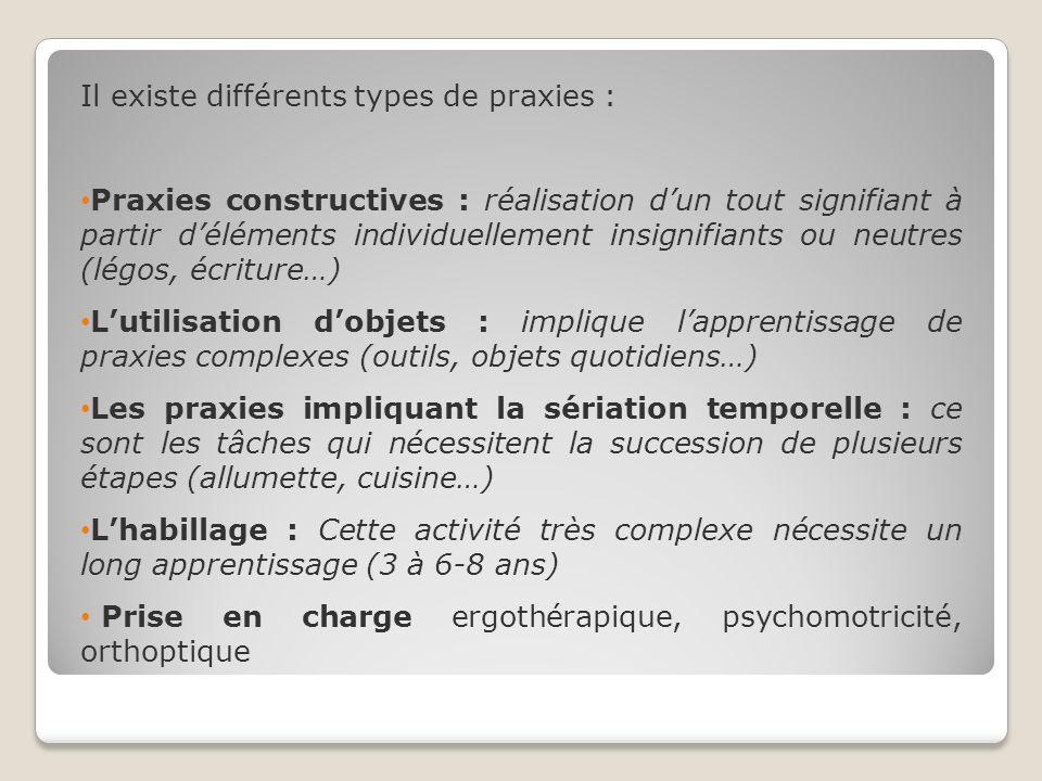Il existe différents types de praxies :