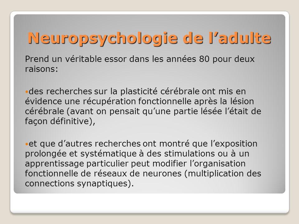 Neuropsychologie de l'adulte
