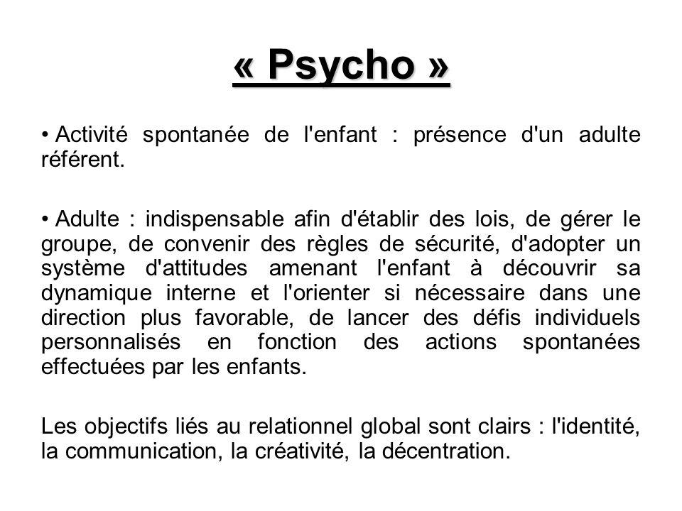 « Psycho » Activité spontanée de l enfant : présence d un adulte référent.
