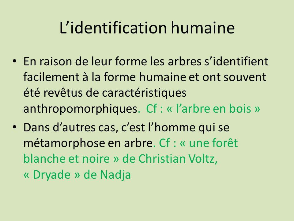 L'identification humaine
