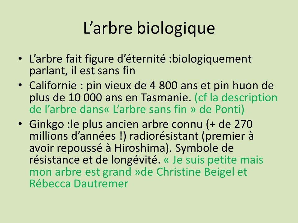 L'arbre biologiqueL'arbre fait figure d'éternité :biologiquement parlant, il est sans fin.