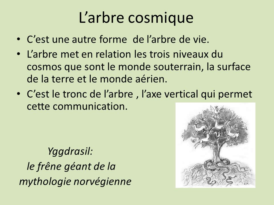 L'arbre cosmique C'est une autre forme de l'arbre de vie.