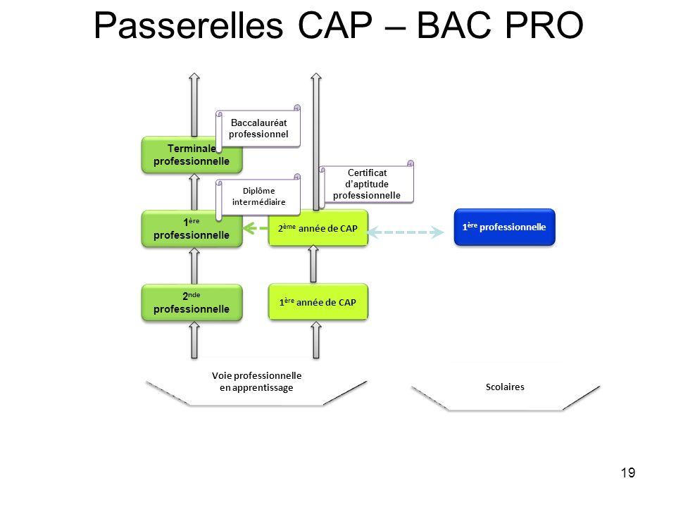 Passerelles CAP – BAC PRO