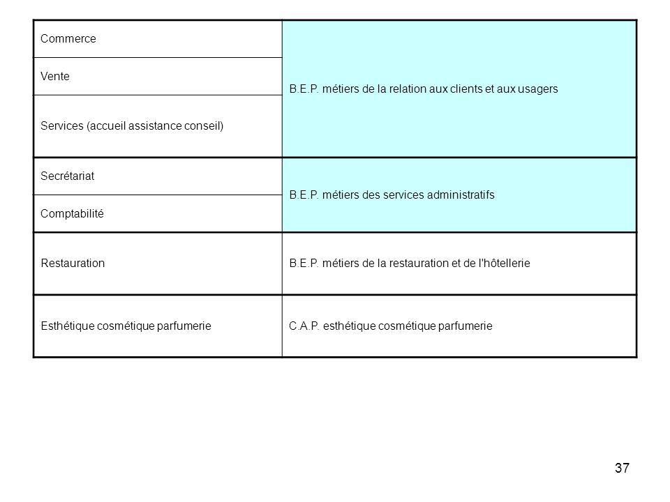 Commerce B.E.P. métiers de la relation aux clients et aux usagers. Vente. Services (accueil assistance conseil)