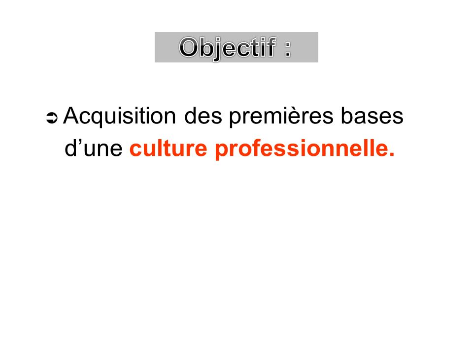 Objectif :  Acquisition des premières bases d'une culture professionnelle.