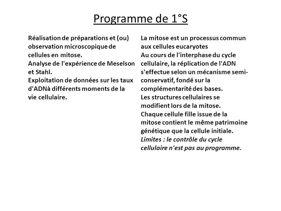 Programme de 1°S