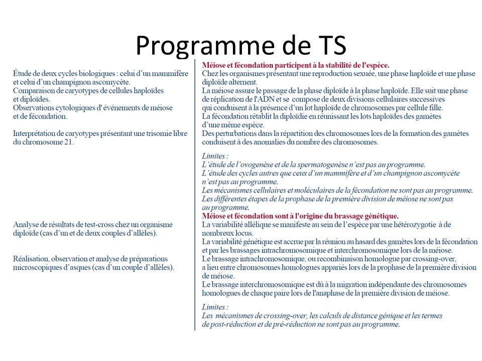 Programme de TS