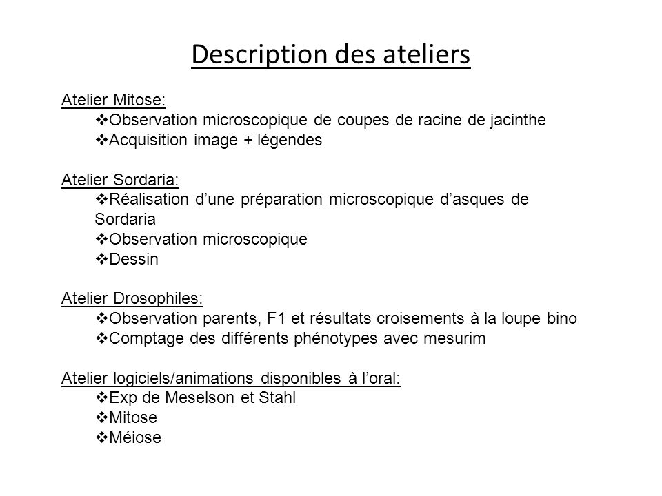 Description des ateliers