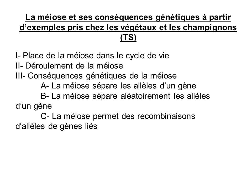 La méiose et ses conséquences génétiques à partir d'exemples pris chez les végétaux et les champignons (TS)
