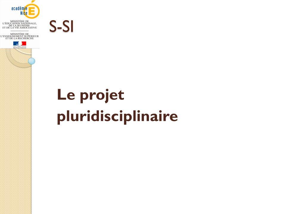 Le projet pluridisciplinaire