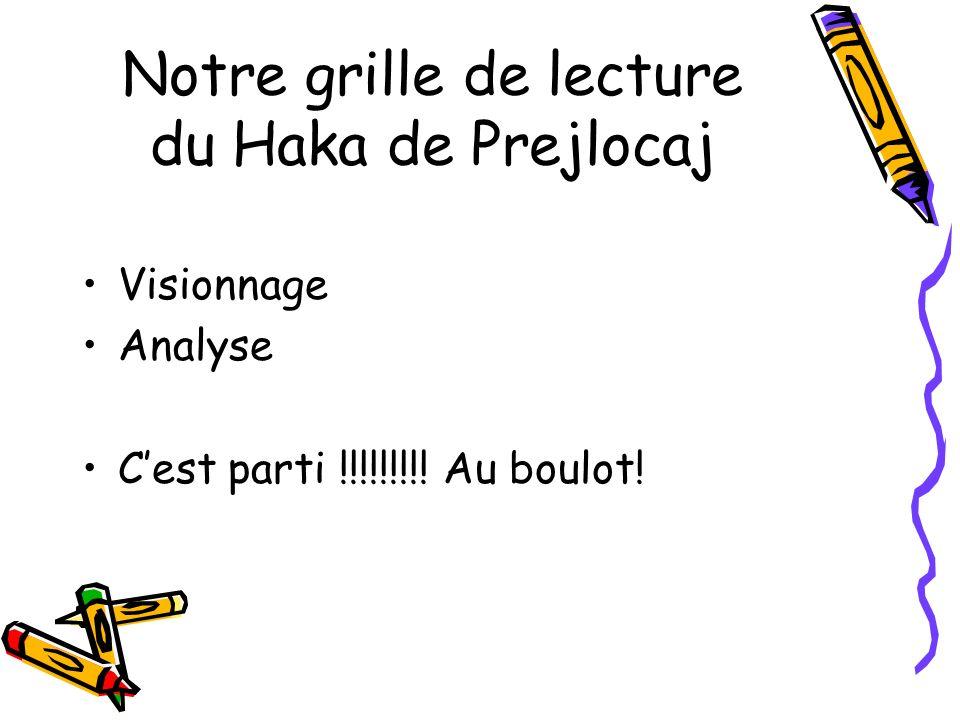 Notre grille de lecture du Haka de Prejlocaj