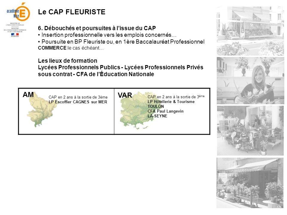 Le CAP FLEURISTE AM VAR 6. Débouchés et poursuites à l'issue du CAP