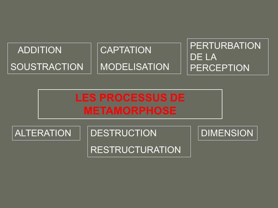 LES PROCESSUS DE METAMORPHOSE