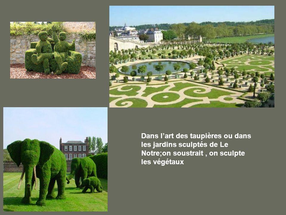 Dans l'art des taupières ou dans les jardins sculptés de Le Notre;on soustrait , on sculpte les végétaux