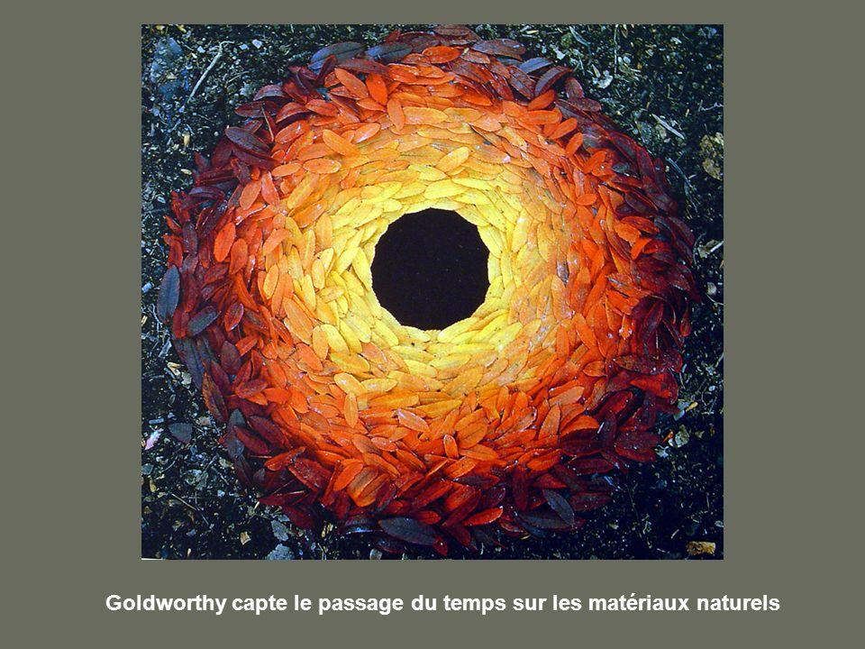 Goldworthy capte le passage du temps sur les matériaux naturels