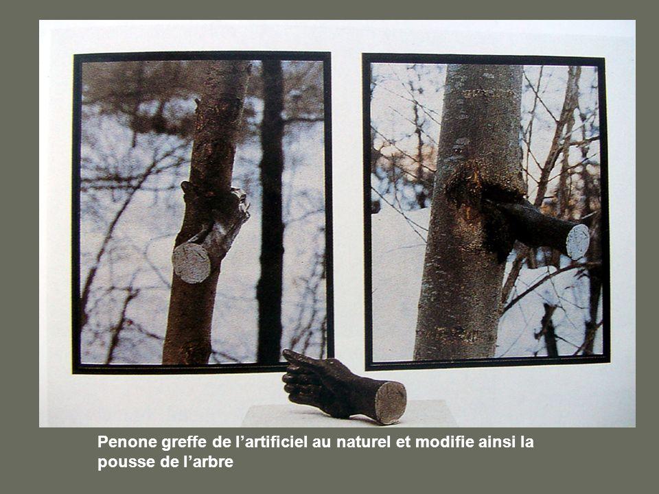 Penone greffe de l'artificiel au naturel et modifie ainsi la pousse de l'arbre