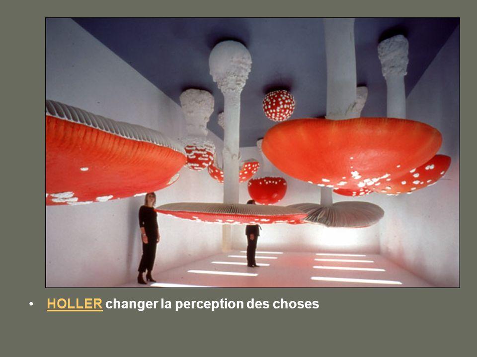 HOLLER changer la perception des choses