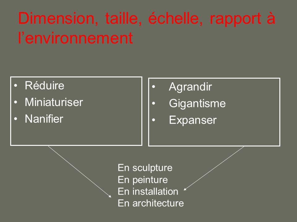 Dimension, taille, échelle, rapport à l'environnement