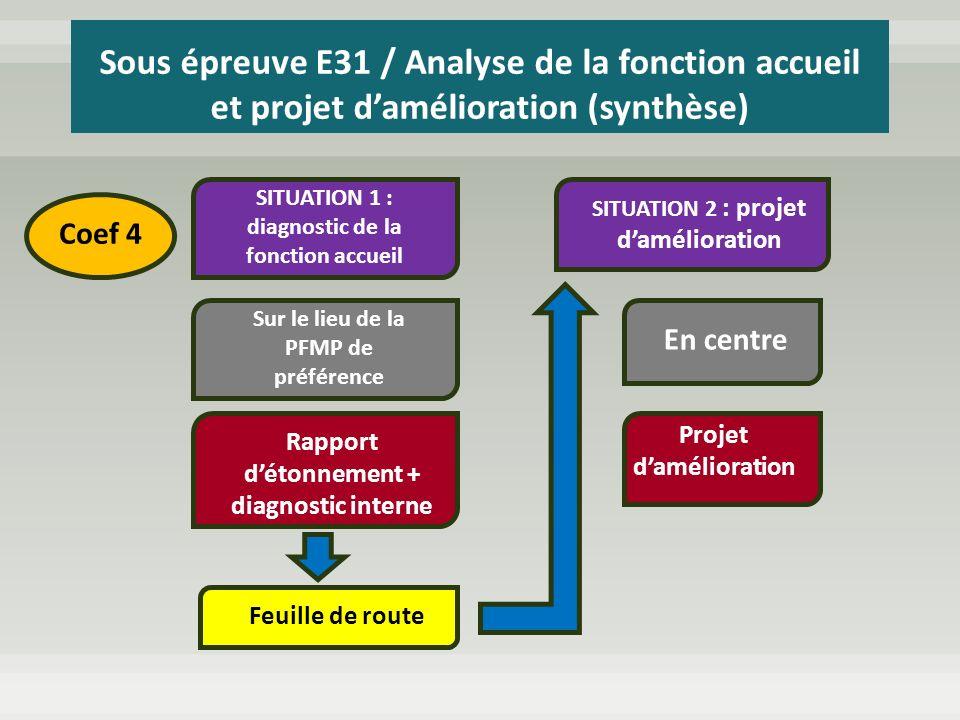 Sous épreuve E31 / Analyse de la fonction accueil et projet d'amélioration (synthèse)