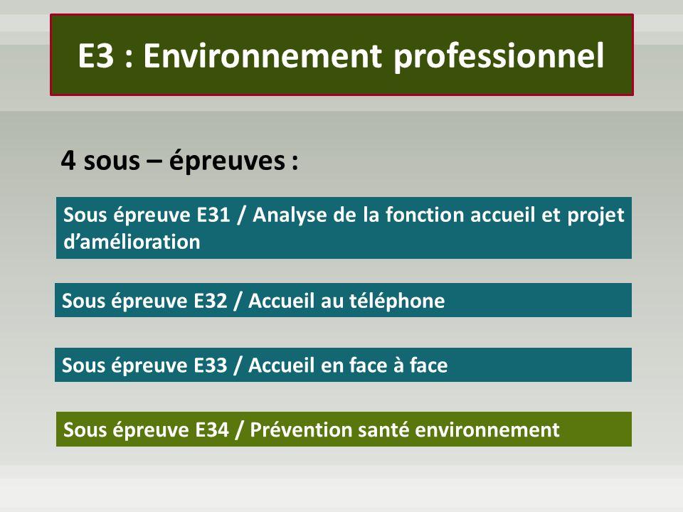 E3 : Environnement professionnel