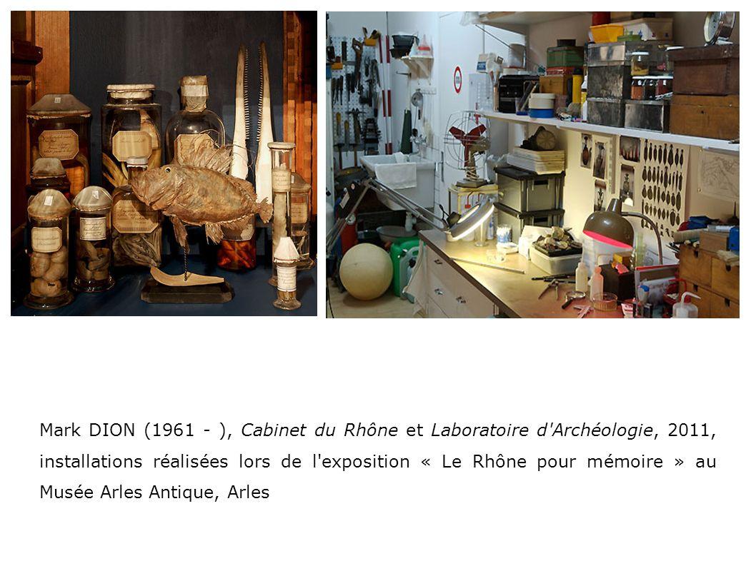 Mark DION (1961 - ), Cabinet du Rhône et Laboratoire d Archéologie, 2011, installations réalisées lors de l exposition « Le Rhône pour mémoire » au Musée Arles Antique, Arles