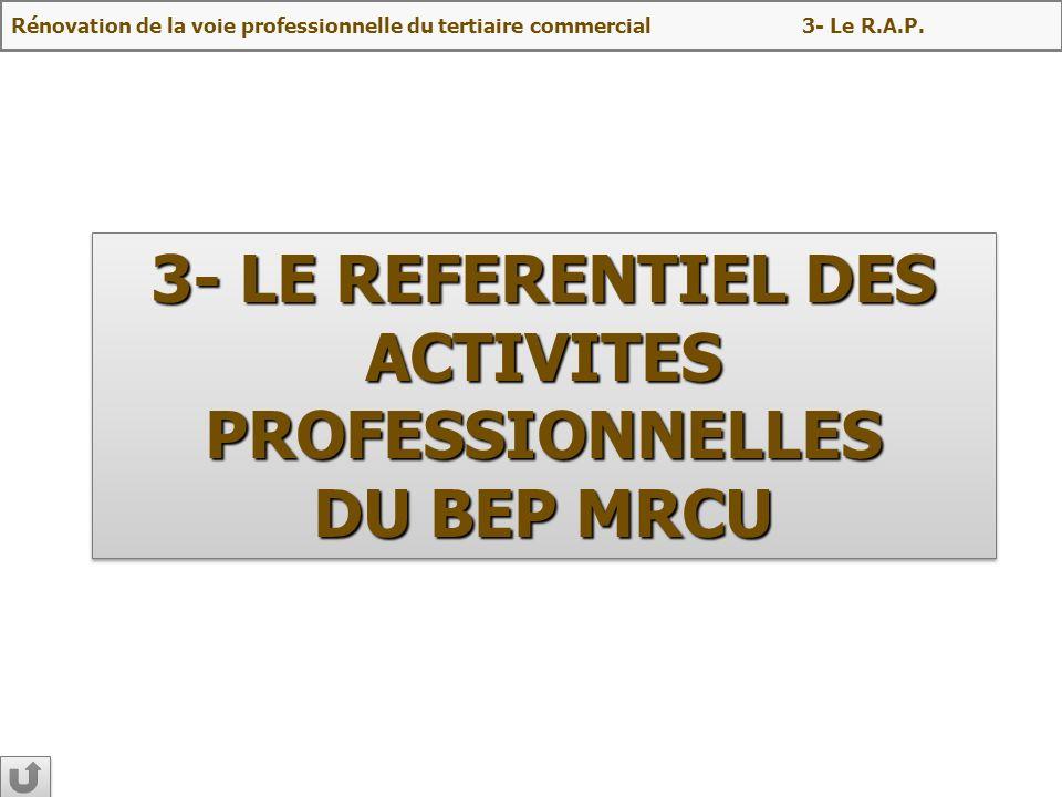 3- LE REFERENTIEL DES ACTIVITES PROFESSIONNELLES