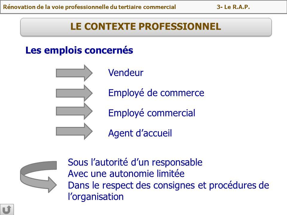 LE CONTEXTE PROFESSIONNEL