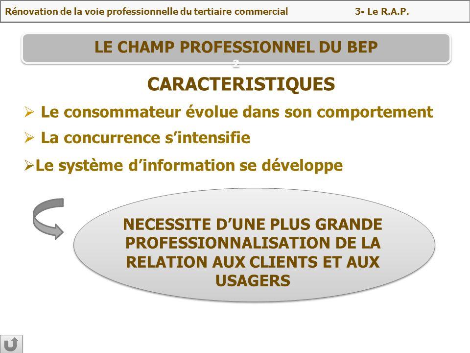 LE CHAMP PROFESSIONNEL DU BEP ²