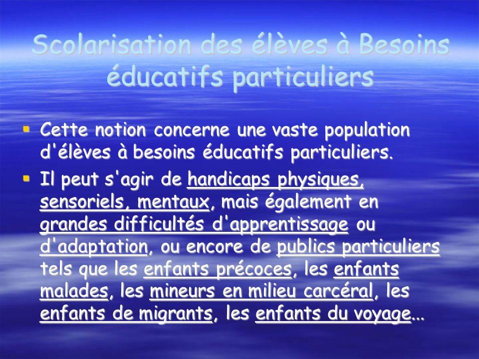 Scolarisation des élèves à Besoins éducatifs particuliers