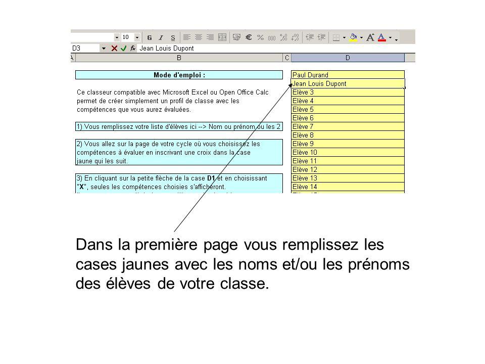 Dans la première page vous remplissez les cases jaunes avec les noms et/ou les prénoms des élèves de votre classe.