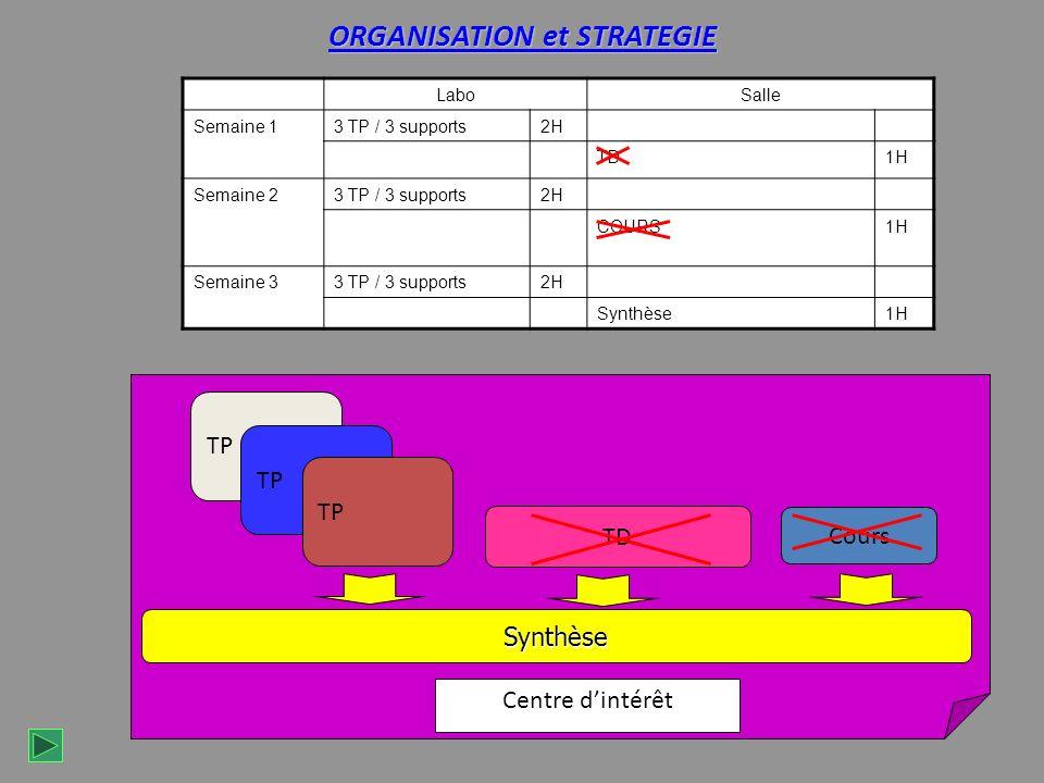 ORGANISATION et STRATEGIE