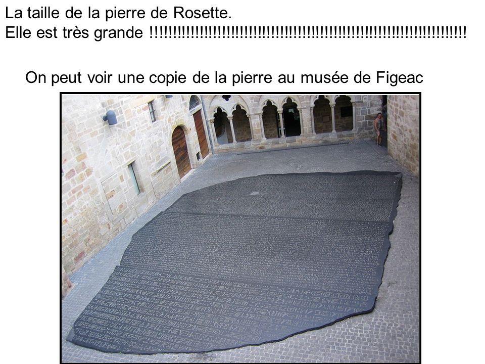 La taille de la pierre de Rosette. Elle est très grande !!!!!!!!!!!!!!!!!!!!!!!!!!!!!!!!!!!!!!!!!!!!!!!!!!!!!!!!!!!!!!!!!!!!!!!