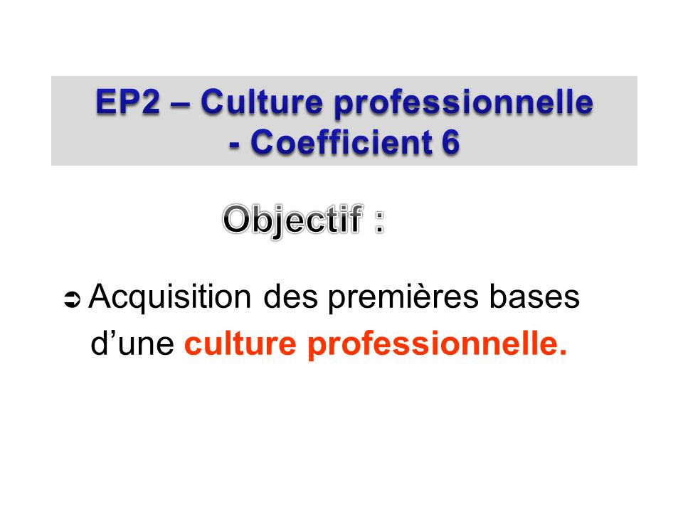EP2 – Culture professionnelle