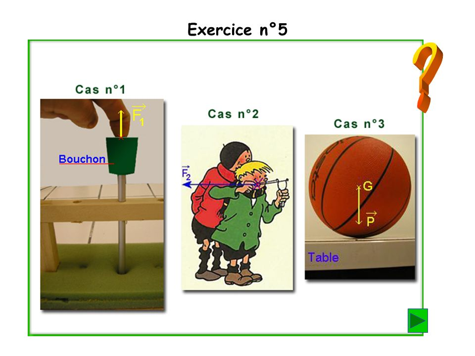 Exercice n°5