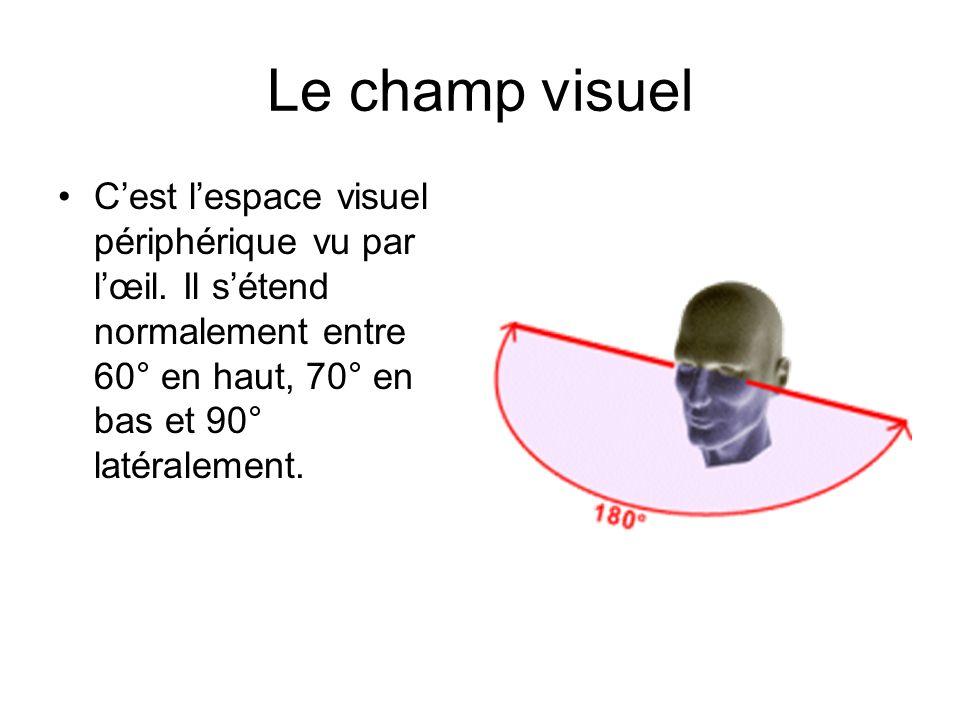Le champ visuel C'est l'espace visuel périphérique vu par l'œil.