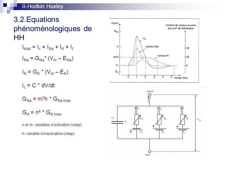 3.2.Equations phénoménologiques de HH