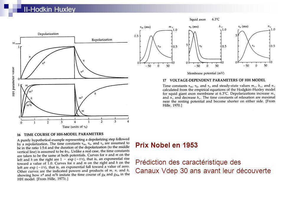 II-Hodkin Huxley Prix Nobel en 1953. Prédiction des caractéristique des.