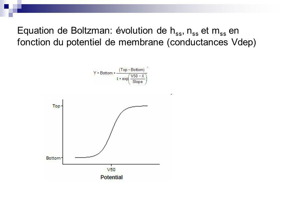 Equation de Boltzman: évolution de hss, nss et mss en fonction du potentiel de membrane (conductances Vdep)