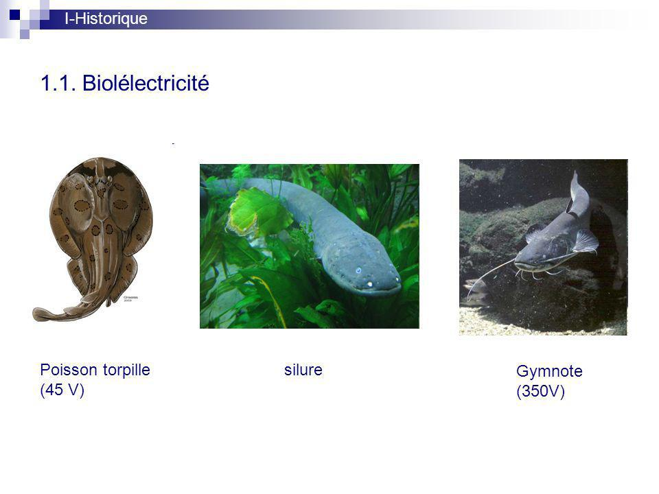 1.1. Biolélectricité I-Historique Poisson torpille (45 V) silure