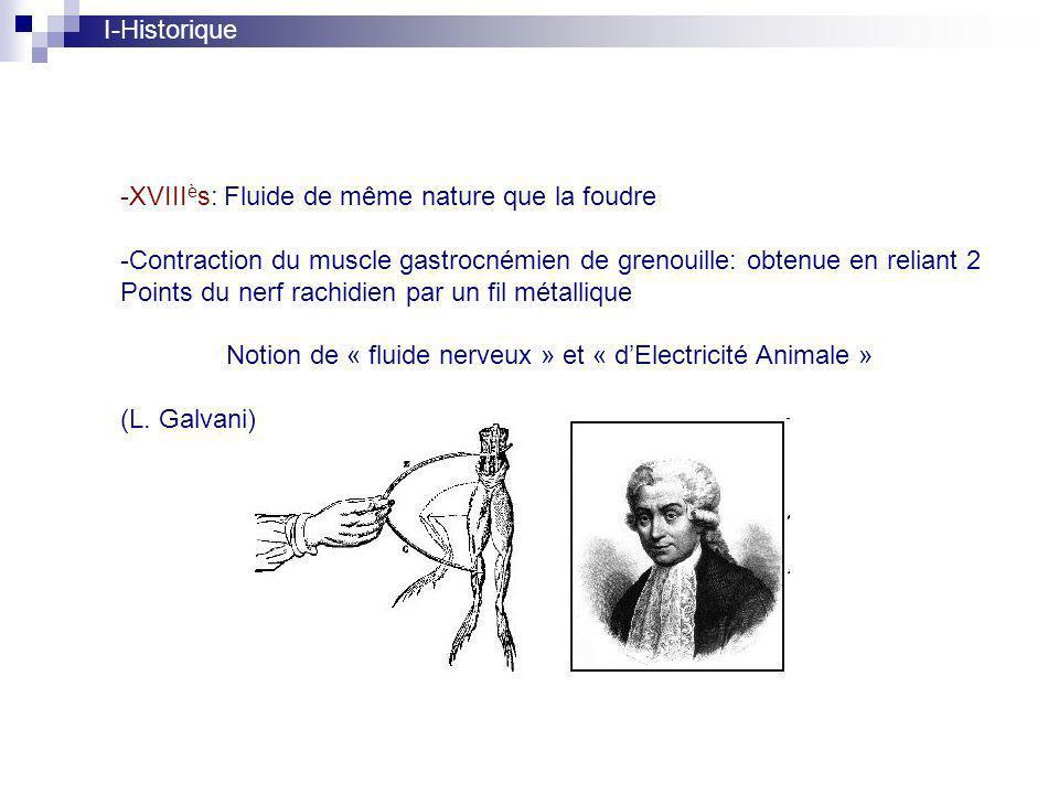 I-Historique XVIIIès: Fluide de même nature que la foudre. Contraction du muscle gastrocnémien de grenouille: obtenue en reliant 2.