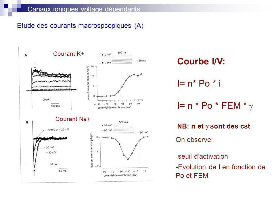 Etude des courants macrospcopiques (A)