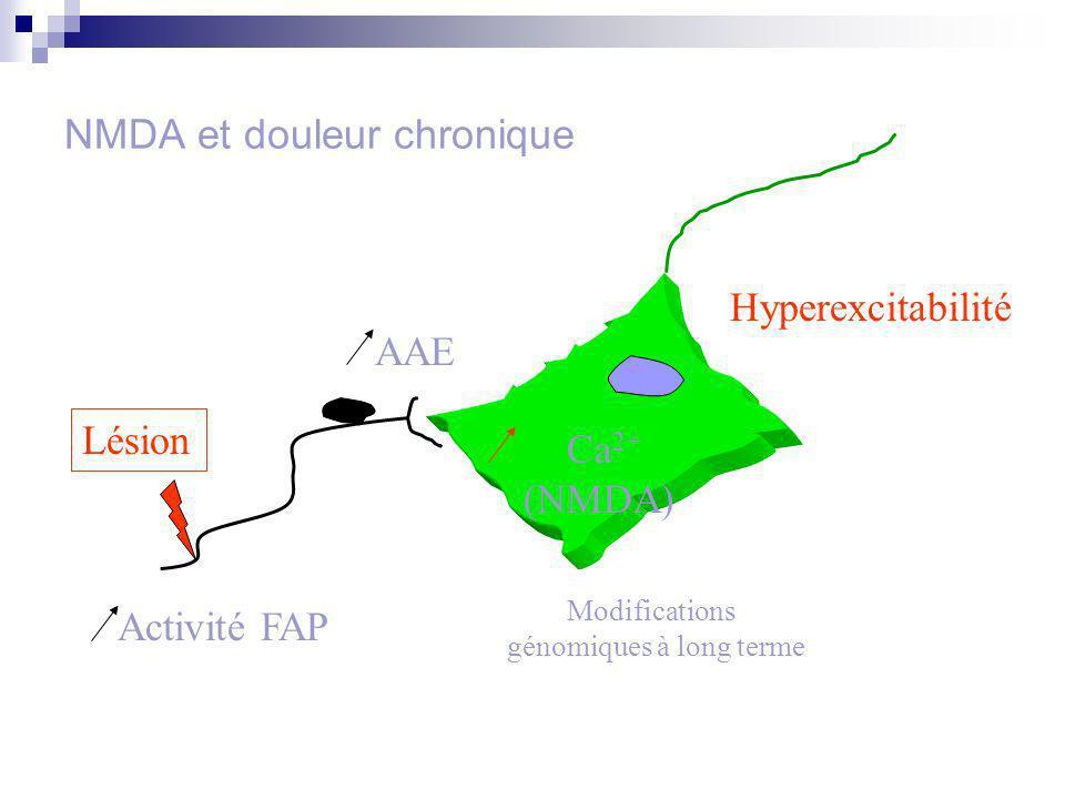 NMDA et douleur chronique