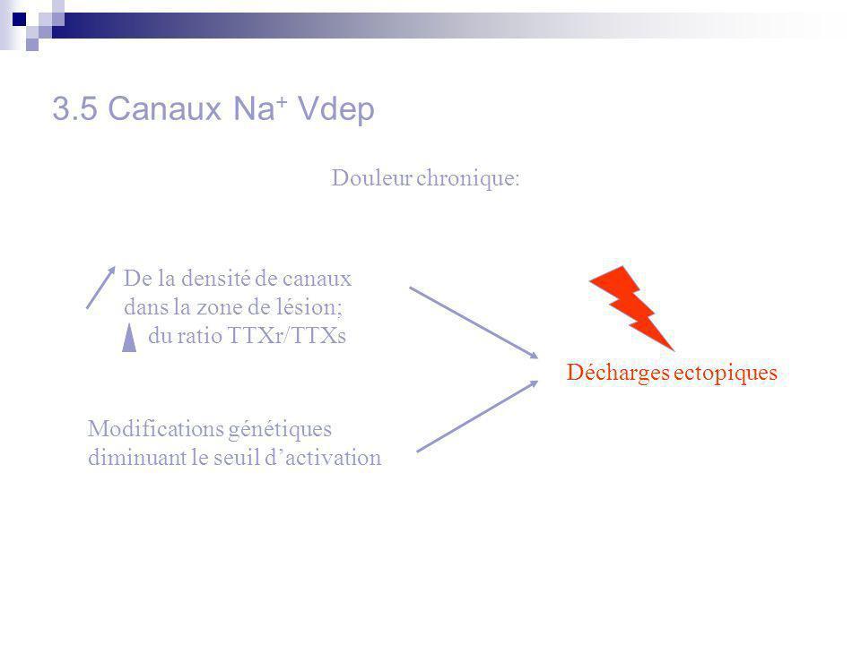 3.5 Canaux Na+ Vdep Douleur chronique: De la densité de canaux