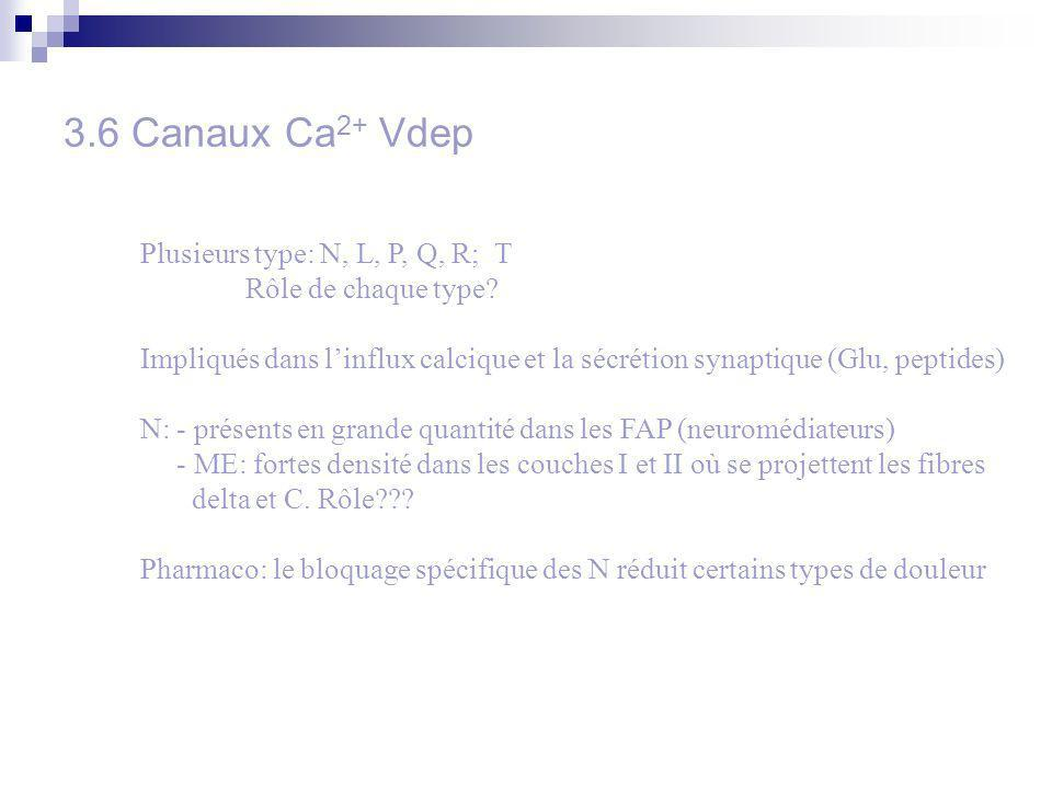 3.6 Canaux Ca2+ Vdep Plusieurs type: N, L, P, Q, R; T