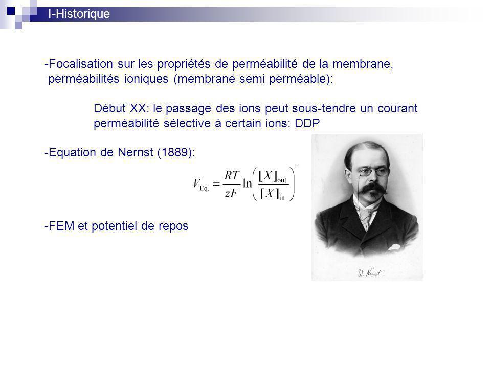 I-Historique Focalisation sur les propriétés de perméabilité de la membrane, perméabilités ioniques (membrane semi perméable):